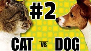 #2 КОШКИ ПРОТИВ СОБАК #2! CATS VS DOGS! ВЕЧНЫЙ СПОР КТО ЛУЧШЕ?