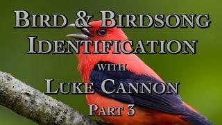 Bird & Birdsong Identification with Luke Cannon Part 3