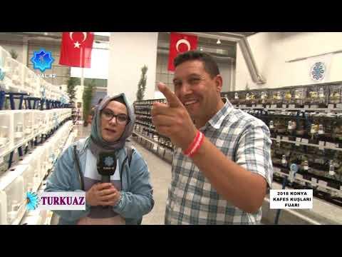 Turkuaz II 2018 Tüyap Konya Kafes Kuşları Fuarı