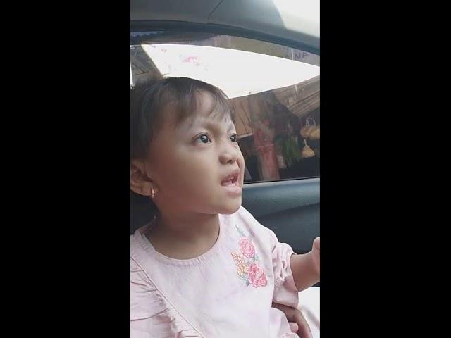 """Video anak lucu bikin ngakak """"lagu meraih bintang"""" via vallen #1"""