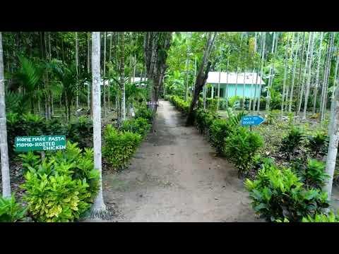 Dream Garden Restaurant & Resort, Neil Island, Andamans.. Cheapest Accommodation