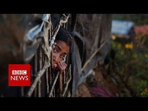 Myanmar Rohingya: Army 'must face genocide charges' BBC News
