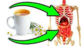 🌼 Этот старинный рецепт из РОМАШКИ поможет сосудам, печени, сердцу, при цистите и даже...
