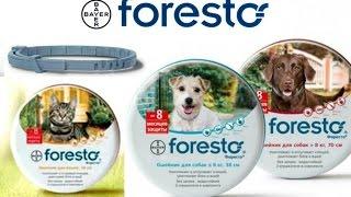 Foresto Ошейник Форесто от клещей и блох для собак и кошек