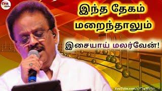 Sangeetha Megam song | ilayaraja special | SPB songs | Mohan Hits | சங்கீத மேகம் HD | Tamil