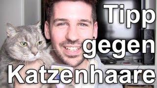 Katzen & Hunde Haare Verhindern FURMINATOR
