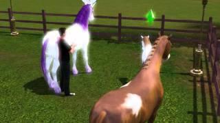 Animaux et Cie: Naissance d'une licorne