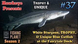 Fishing Planet S2 - White Sturgeon, TROPHY, and UNIQUE Blue Catfish at the Fairytale Dock!