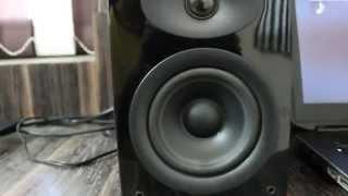 SWANS [ HIVI ] - D1010 MKII - studio monitors / Book Shelf