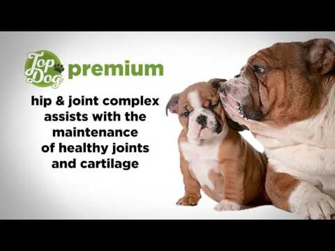 Premium Dog Supplements for Joint - Arthritis Pain Relief for Dogs with Glucosamine Chondroitin MSM
