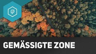 Die Gemäßigte Zone - Klimazonen einfach erklärt