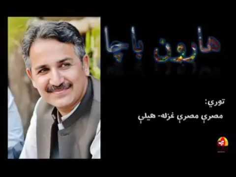 Haroon Bacha Tapay