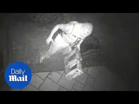 'Ninja burglar' suspect caught on surveillance camera  Daily Mail