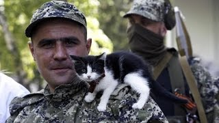 Война на Украине | War in Ukraine - Мы не умрем сейчас [18+]
