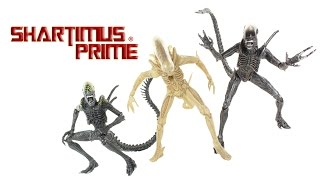 NECA Toys Alien vs Predator Grid Alien, Warrior, and