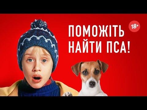 Один удома 2 - Хот Перевод Переозвучка (18+)