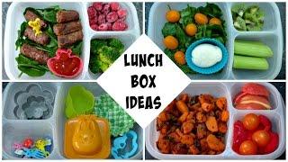5 Lunch Box Ideas - Sandwich Free, Gluten Free & Paleo Friendly