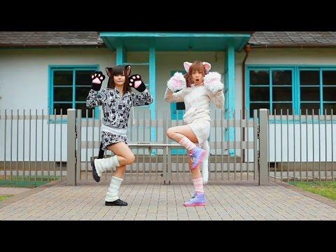 Super Nuko World【すーぱーぬこわーるど】- By Yuikonnu & Ayaponzu ( Japanese Cover ) feat Komari & Nia dance