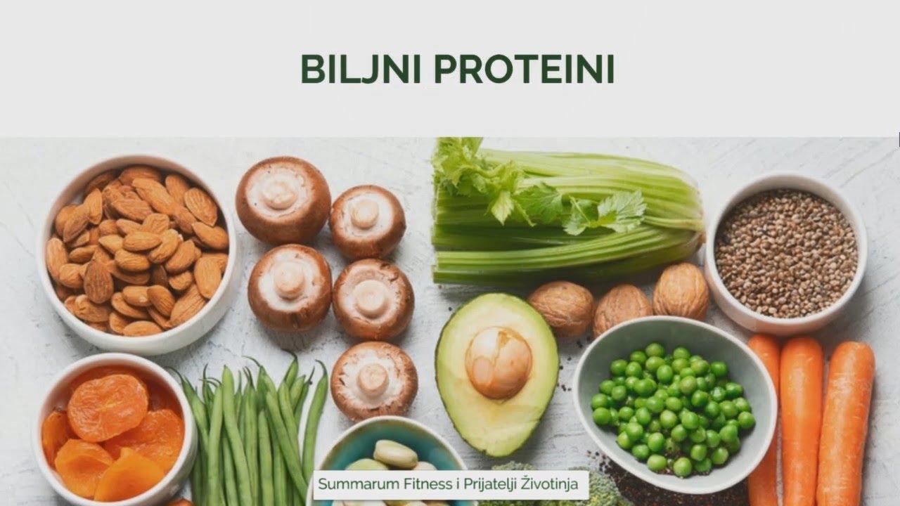 Biljni vs Životinjski proteini | Webinar PŽ