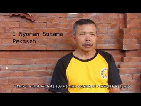 video profil subak