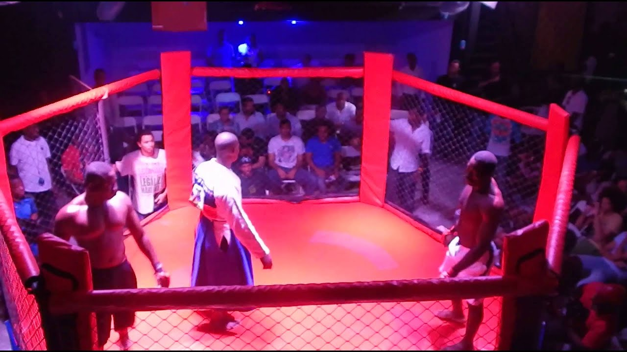 Download Fights, Martial  LNKL