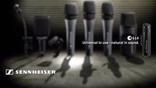 Sennheiser e614 - Microfone a condensador para bateria