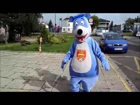 Elabika mascot costumes Teddy Bear sport team mascots ASV Vösendorf animal mascot costumes