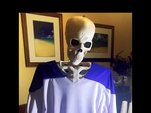 """The Making a """"Miracle on Ice"""" Inspired Jersey for Halloween"""