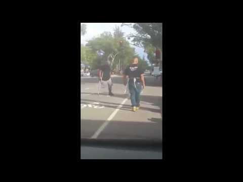 Cell Phone Video: Morgan Hill VTA driver attacked