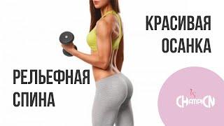 Красивая осанка | Рельефная спина | Бицепс | Тренировка для дома | MS Champion