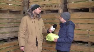 Michał Kołodziejczak: minister rolnictwa nas okłamał | OnetNews