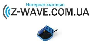 Розпакування диммер Z-Wave Qubino ― GOA_ZMNHDA2
