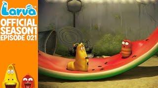 vuclip [Official] Water melon - Larva Season 1 Episode 21