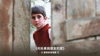 【爱奇奇说电影】像个孩子一样保持童真到底有多重要?伊朗电影大师阿巴斯村庄三部曲之一《何处是我朋友的家》!