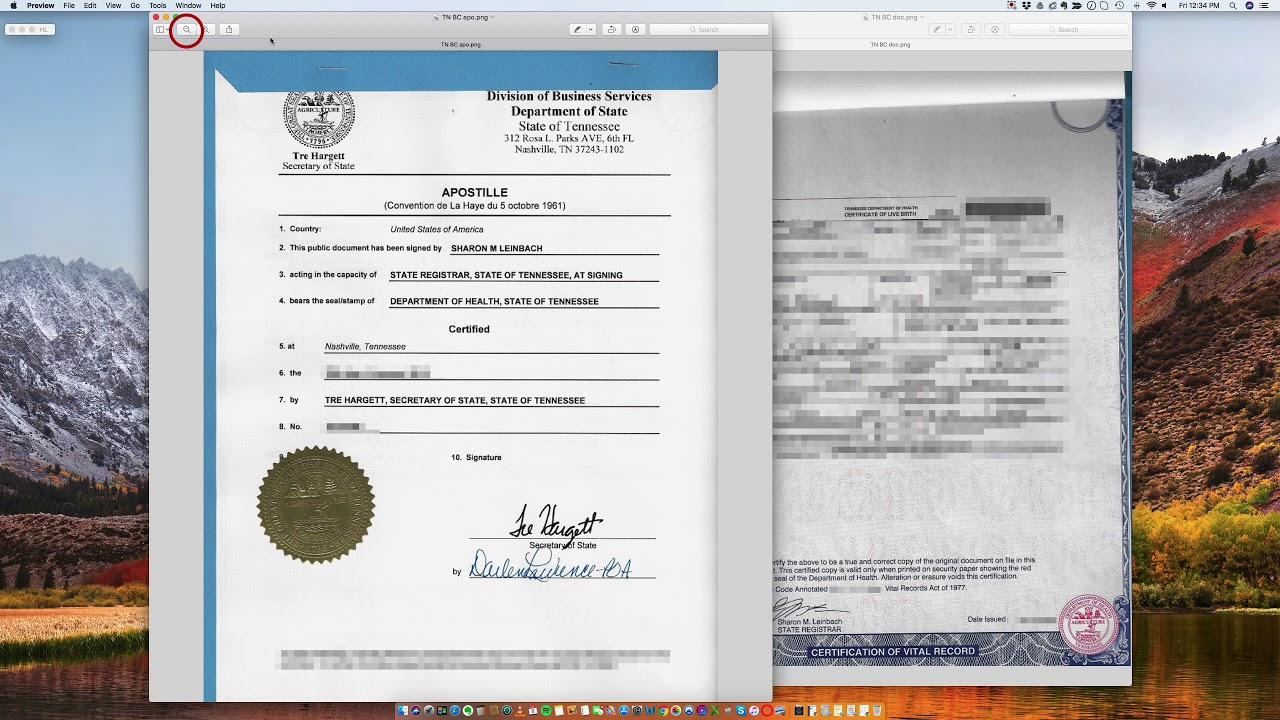 birth tennessee certificate state apostille