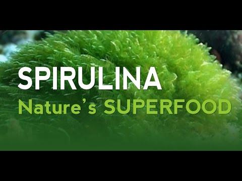 Spirulina - 21st Century Superfood