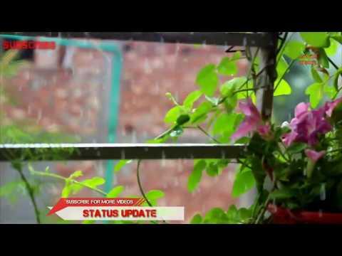 Ei Meghla Dine Ekla - Rabindra Sangeet WhatsApp Status Video 2018 || Rabindra Status||