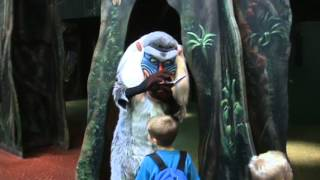 Meeting Rafiki in Animal Kingdom