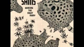 The Shins - Spilt Needles
