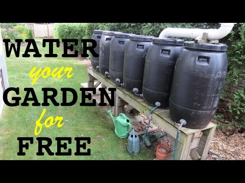 Rainwater collection system ● free water