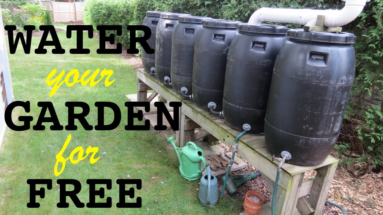 Make Rainwater Tanks ● From Pickle Barrels