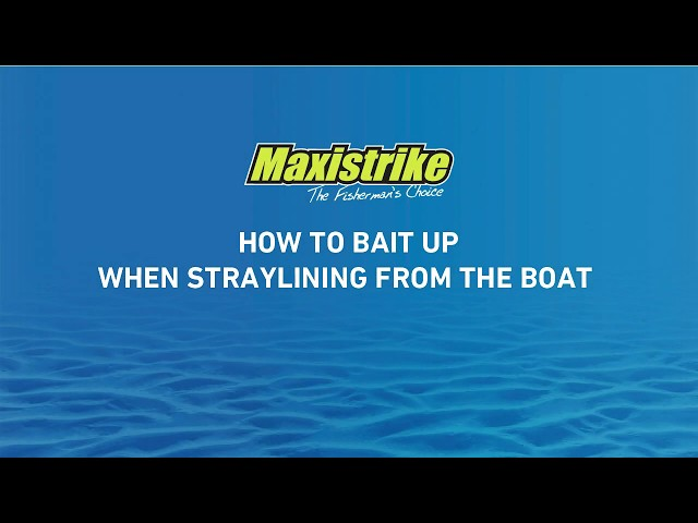 Learn how to bait up when straylining from a boat