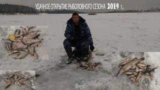 Удачное открытие рыболовного сезона 2019 г. в новогодние праздники! Зимняя рыбалка на водохранилище.