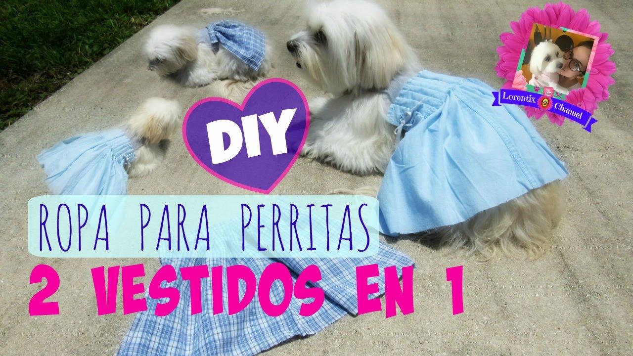 Diy 2 En 1 Vestido Para Perritas Practico Para Sesion De Fotos Coton De Tulear