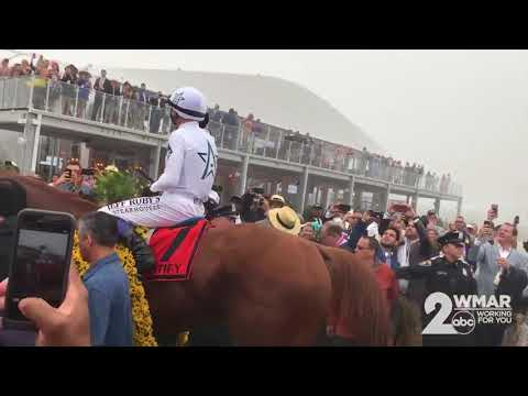 Justify wins Preakness Stakes