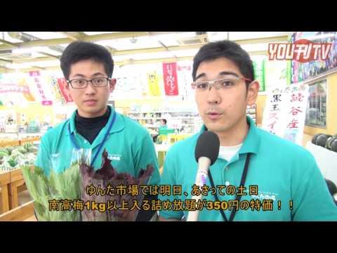 YOU刊TVゆんた市場・梅特売 16年6月17日金FMよみたん・YOUTV・沖縄・読谷村