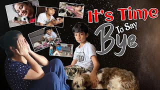 It's Time to Say BYE | Emotional Sendoff to New Born Shihtzu Puppies| DIML| Vlog | Sushma Kiron