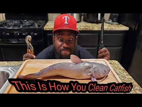 Simple Steps To Skin And Fillet Any Catfish Correctly