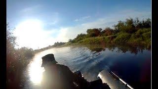 ЩУКА ЗА ЩУКОЙ. Дорожка (тролинг) на малой реке