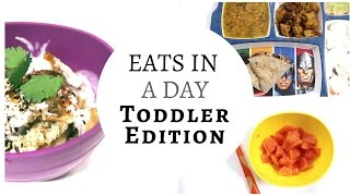 What 1 year old eats in a Day ?! | 16 Month old | Indian and Vegetarian